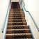 carpeted staircase leading to office level
